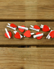 mini-pinzas-corazon-bodas-4